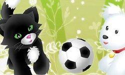 Futebol de Bichinhos
