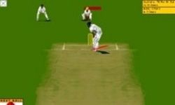 Virtual Cricket