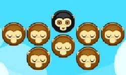 Matching Monkeyz
