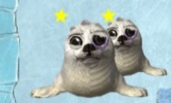 Whack-A-Seal