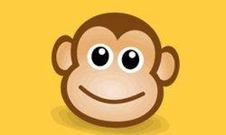 Monkey Sound Memory
