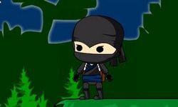 Ninja Delivery