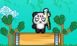 Panda à Sauver