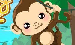 Cuidar de Macaco