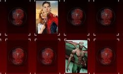 Spiderman Mega Memory