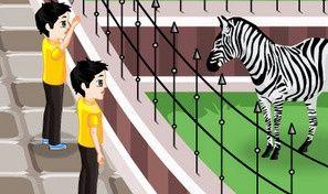 Zoo Caring