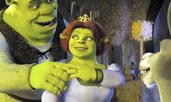 Shrek Puzzle 2