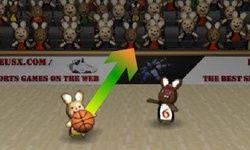 Bunny B-Ball