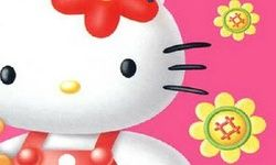 Hello Kitty Flowers