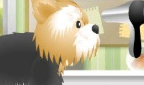 Original game title: Pet Grooming Shop