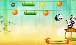 Panda Bounce