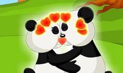 Panda Kissing