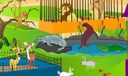 Animal Park - Spot the D