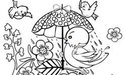 Bird Coloring