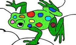 Livro de Colorir do Zoológico