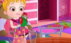 Baby Hazel Parrot care