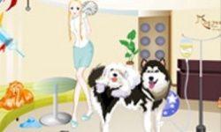 Dogs Hospital