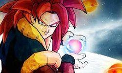 Habillage de Goku de Dragon Ball Z