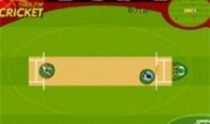 Table Top Cricket