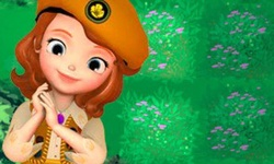 Sofia the First: The Buttercups Forest Adventure