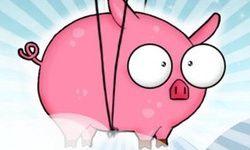 Pigsy Dream