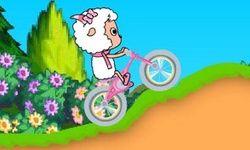 Kambing di atas Sepeda