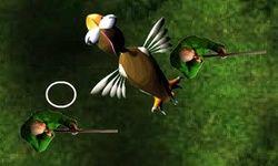 Kuşun İntikamı