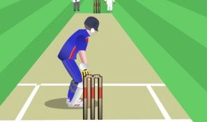 World Cricket Slog Master