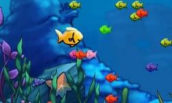 Fishda