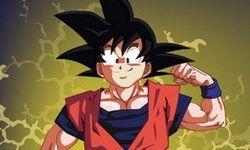 Vestindo Goku