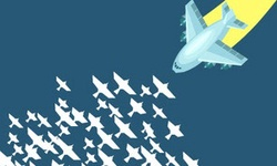 Air Traffic Mania: BS