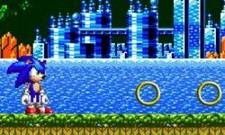 Sonic Course Extrême