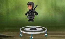 Bouncing Ninja