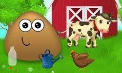 Pou at the Farm