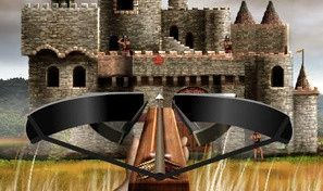 Crossbow Crusader