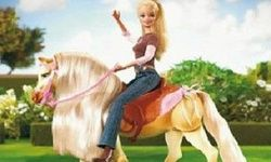 Barbie's Round Up
