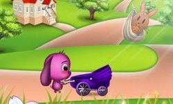 Toto's Animal Rescue