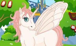 Crea il Tuo Mini Pony