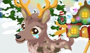 Original game title: Reindeer Care