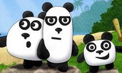 Bevrijd de panda's