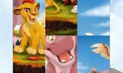 The Lion Guard Puzzle