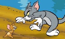 Tom & Jerry:Cat Crossing