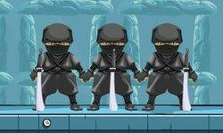 Ninjas Fun