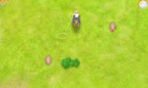 Original game title: Nicki's Roundup