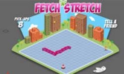 Fetch n Stretch