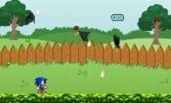 Sonics Gartenschlacht