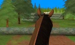 3D прыжки на лошадях