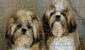 Original game title: Dog Jigsaw