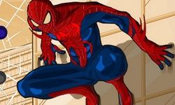 Spiderman´s Garderobe