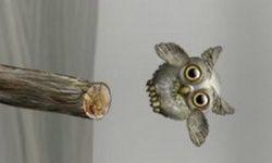 Cute Owl 2